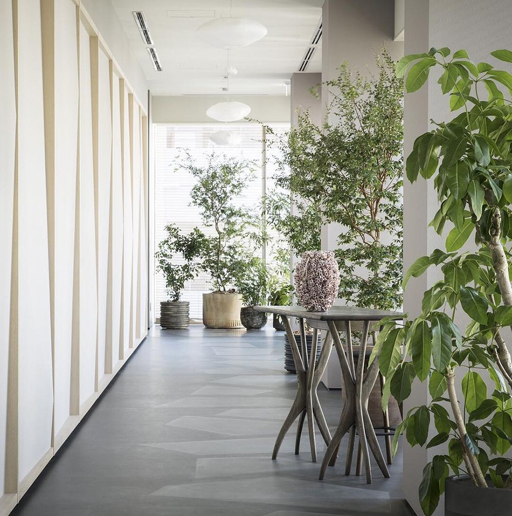Hallway leading to INUA with green plants and wood panels.